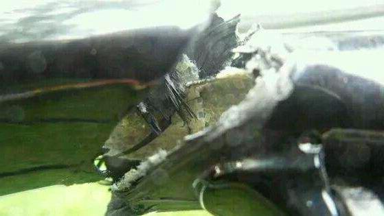 碳纤维断裂